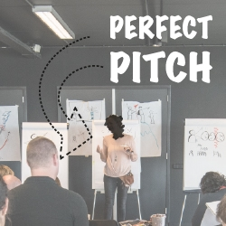 the perfect pitch twee